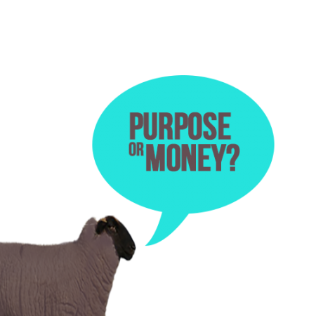 purpose_or_money2