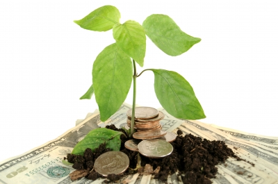 Social Finance - Money Sprout