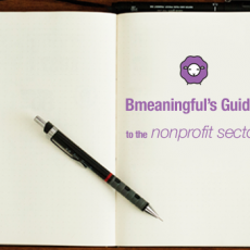 guide to nonprofit sector