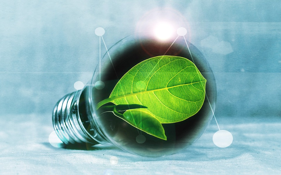 4 leaders share: Canada's biggest opportunities in impact investing
