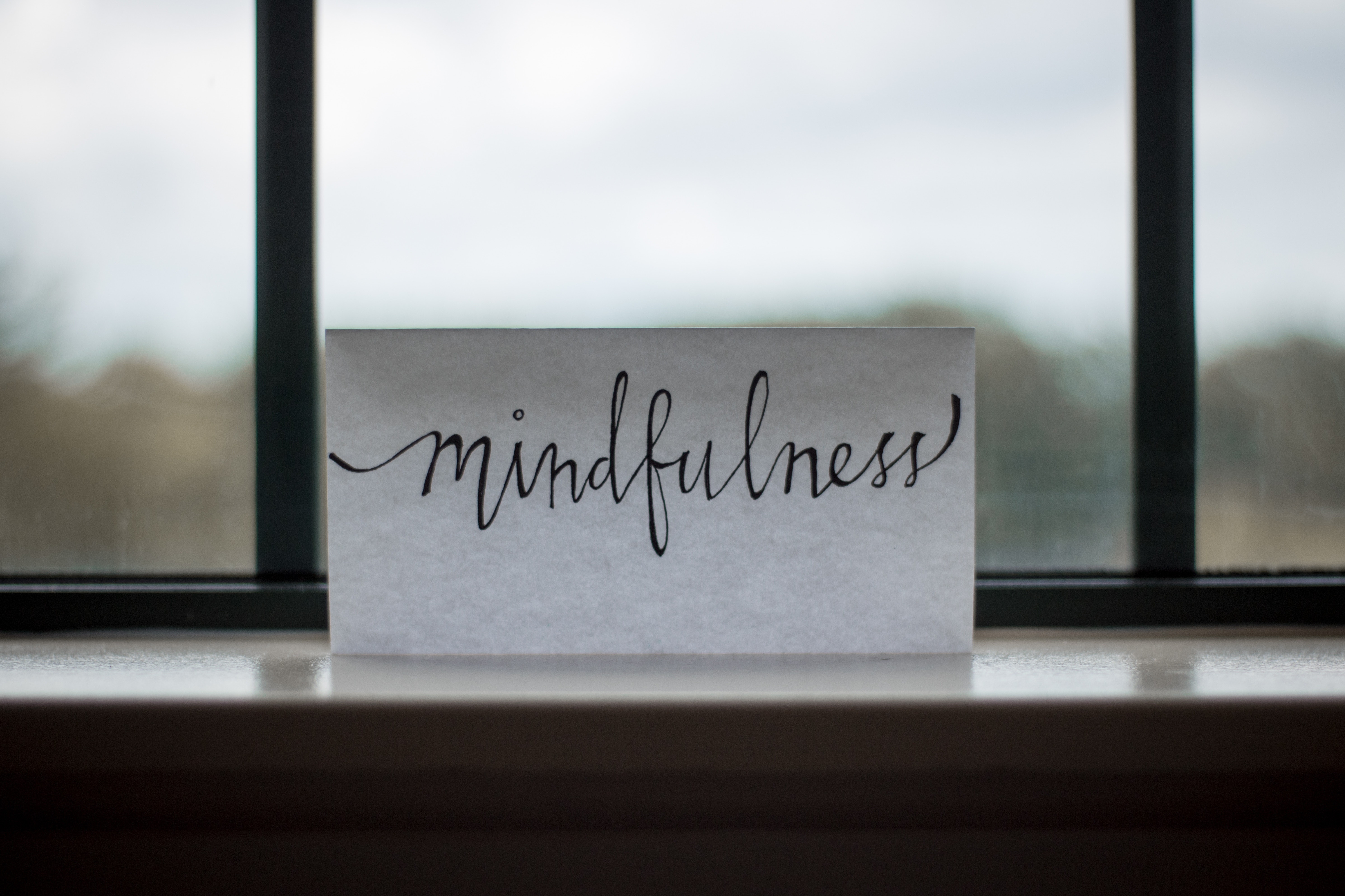 Mindfulness: A resource for your job search toolkit